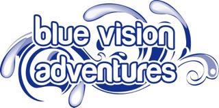 logo-bluevision